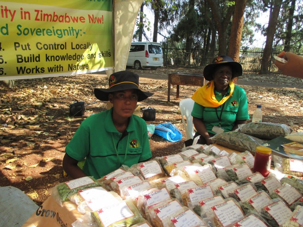 Members of the Zimbabwe Smallholder Organic Farmers Forum (ZIMSOFF), an IDEX partner