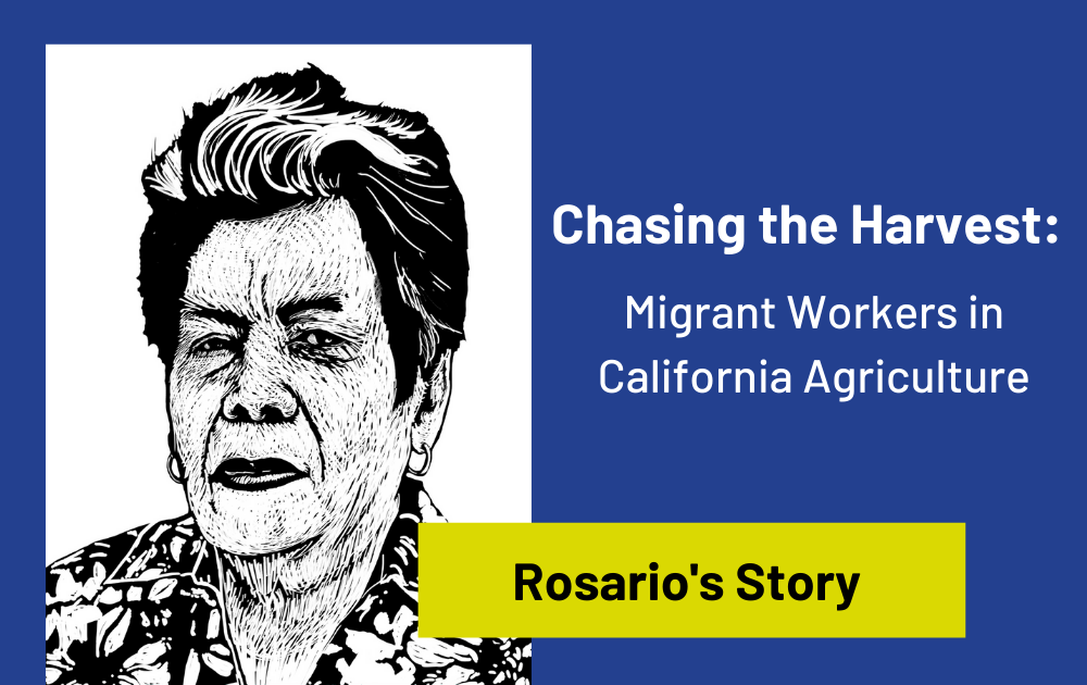 From the Archives: Rosario's Story of Farmworker Strikes in Chasing the Harvest