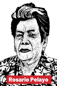 Rosario Pelayo